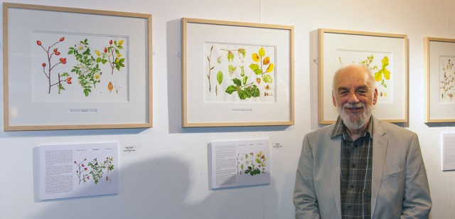 Rodger Reynolds of the Childwick Botanical Artists