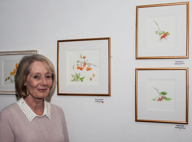 Madeline Hawkes of the Childwick Botanical Artists